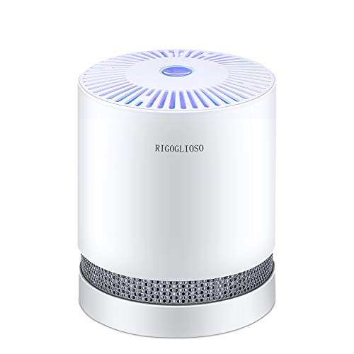 RIGOGLIOSO Air Purifier for Home...