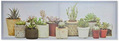 AVENUELAFAYETTE Cadre Toile Tableau Plante Cactus - Plante grasse - succulente dans Pot - 90 x 30 cm (M3)