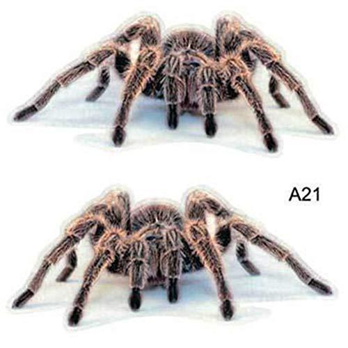 DYTE Tier Aufkleber 3D Auto Aufkleber-Skorpion Eidechse Spinne-Gestanzte Aufkleber Autoaufkleber Autos LKW Laptops 18 cm * 16 cm