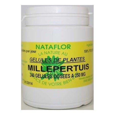 GELULES MILLEPERTUIS plante 240 gélules dosées à 250 mg.