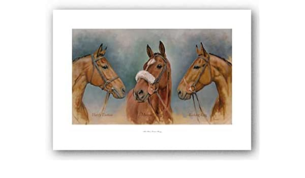 The Three Winter Kings Framed Print by Sarah Aspinall
