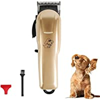Pet Clipper Inalámbrico USB Carga Profesional Perro Pelo Trimmer Pet Kit Baja Vibración Adecuado para Perros, Gatos Y Otros Animales (Negro Y Oro)