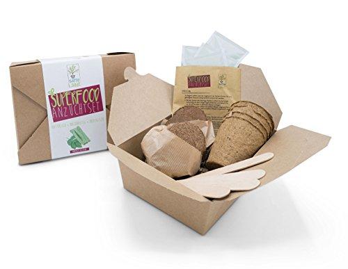 SATTE SAAT Superfood Anzuchtset mit Moringa, gesunden Kräutern und Gemüse - ökologisches Pflanzset inkl. Töpfe, Anzucht-Erde, Holz-Sticks, Samen und Anleitung - zeitloses Urban Gardening Geschenk