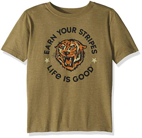 Life Is Good Boys Cool Tee Earn Your Stripes, Fatigue Green, XX-Large - Life Is Good Boys T-shirt