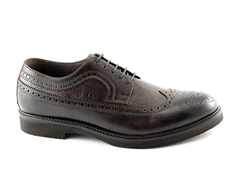 NERO GIARDINI 4421 marrone scarpe uomo eleganti derby inglese pelle Marrone