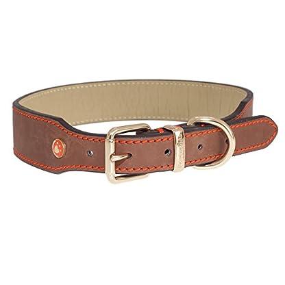 Rosewood Luxury Leather Dog Collar, Tan, Samml 10 - 14 inch 2