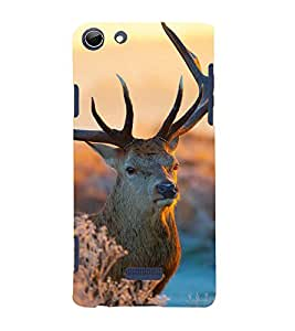 ifasho Designer Back Case Cover for Micromax Canvas Selfie Lens Q345 (Deer Cali Colombia Raigarh)
