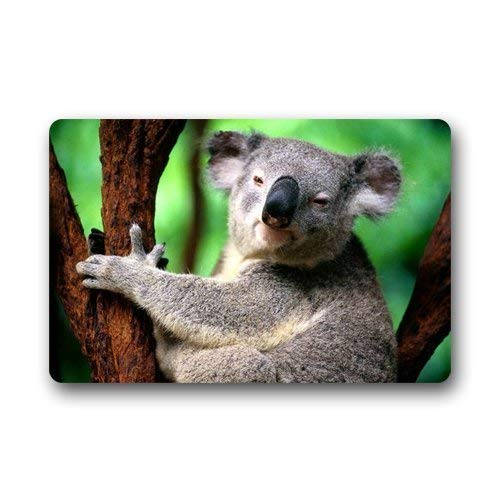 ferfgrg Custom Cute Koala Machine Washable Indoor Outdoor Mats Doormat (L23.6