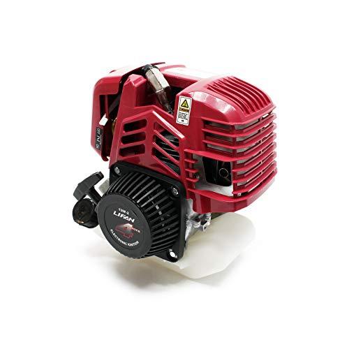 WilTec LIFAN 139F-2 Motor Gasolina 1,2CV Motosierras Sopladores Cortacéspedes Perforadoras Tierra