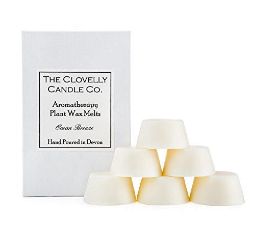 Clovelly Soap Co Handmade Natural Scented Ocean Breeze Aromatherapy Soy Wax Melts Box of 6 Tarts