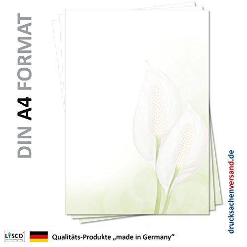 Motiv Briefpapier (Blumen-5117, DIN A4, 25 Blatt) Zimmerpflanzen grünes Briefpapier mit weißer Blume Einblatt Motivpapier