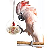 Semi Di Uccello Cibo Foraggiamento Palla Giocattolo Di Intelligenza Per Parrot Budgie Parrocchetto Cockatiel Cacatua Grigio Africano Maca, Hanging Birds Foraging Cat Bird Cage Accessories,Bwithchain