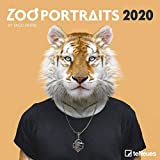 Zoo Portraits 2020