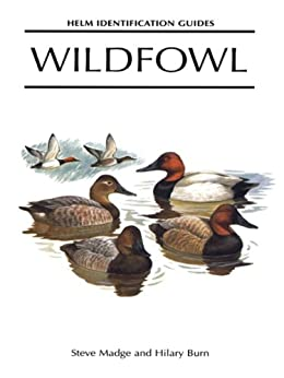 Wildfowl: An Identification Guide to the Ducks, Geese and Swans of the World (Helm Identification Guides) by [Madge, Steve, Burn, Hilary]