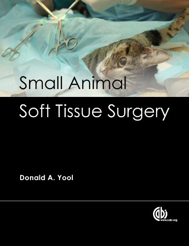 Small Animal Soft Tissue Surgery (English Edition)