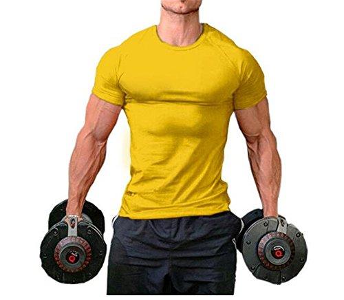 Cotton Muskel-shirt (Hippolo Männer Pure Cotton Fitness T-Shirt Muskel Body Shirt Kurzarm (M, Gelb))