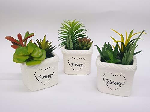Takestop® pianta grassa con vaso quadrato bianco ceramica finta artificiale decorazione scrivania casa ufficio giardino fantasia casuale