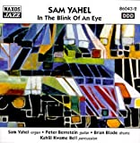Songtexte von Sam Yahel - In the Blink of an Eye