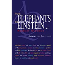 From Elephants to Einstein…: Answers to Questions