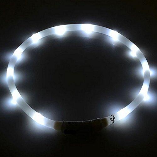 Hunde Leucht-Halsband LED-Leuchthalsband Leucht-Schlauch Sicherheitshalsband Blinklicht für Hunde und Katzen USB aufladbar keine Batterien mehr nötig von UC Express®, Farben:Weiß