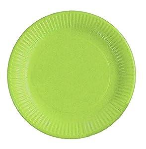 Braun & Company 3704-0204 - Platos de Fiesta (10 Unidades), Color Verde Claro