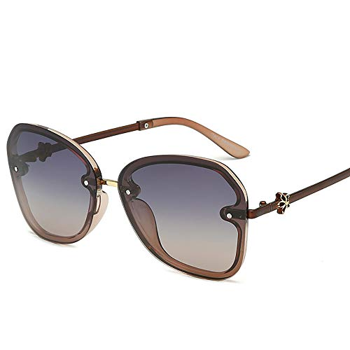 NQN Premium Ultra Sleek, Sport-Pilotenbrille, polarisiert, 100% UV-Schutz, großer Rahmen für Männer und Frauen,C2 (Sport-programm Frames)