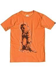 Quiksilver Classic T-Shirt manches courtes Garçon