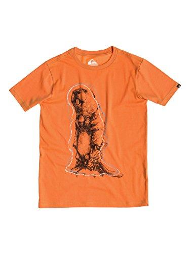 Quiksilver Classic - T-shirt da ragazzo a maniche corte, Ragazzo, Classic, Mandarino, 8 anni