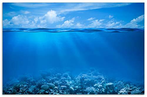 Wallario Herdabdeckplatte/Spritzschutz aus Glas, 1-teilig, 80x52cm, für Ceran- und Induktionsherde, Motiv Unterwasserwelt Meer