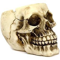 Cráneo 12 cm