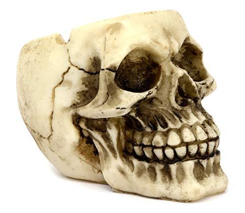 Cenicero con cabeza de calavera 12 cm