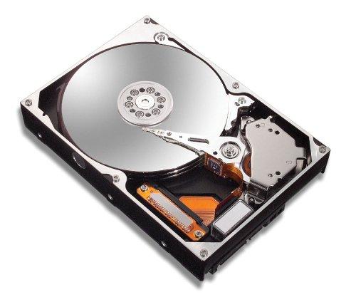 Maxtor 6L250R0 DiamondMax 10 interne Festplatte 250GB bulk ATA (IDE) 7200rpm 16MB Cache -
