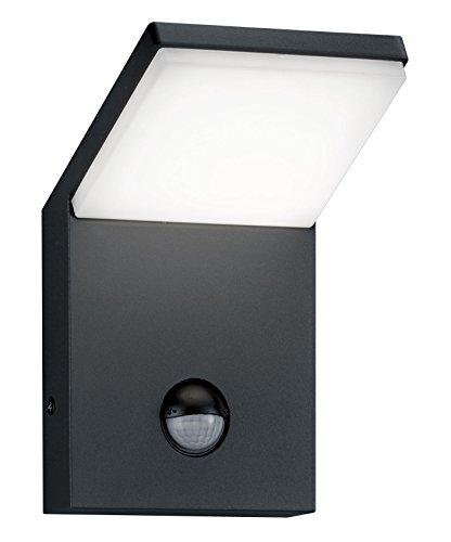 LED-Außenwandleuchte 810 LED