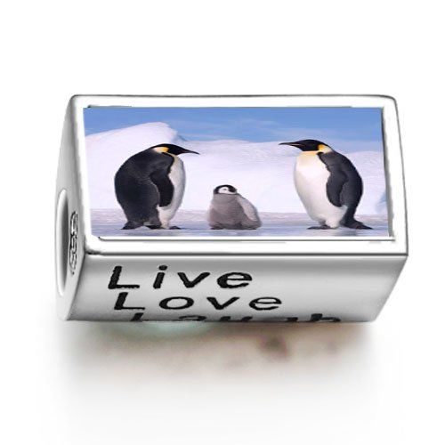 fashion-animal-penguin-in-antarctica-words-live-love-laugh-bead-charm-fit-pandora-chamilia-biagi-bea