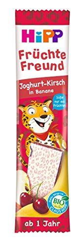 Bio-leopard (HiPP Bio-Riegel Früchte Freund Leopard Joghurt-Kirsch in Banane, 22er Pack (22 x 23 g))