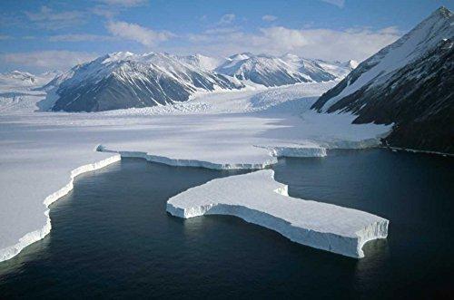 The Poster Corp Tui De Roy - Dugdale and Murray Glaciers Descending into Robertson Bay Victoria Land Antarctica Kunstdruck (30,48 x 45,72 cm)