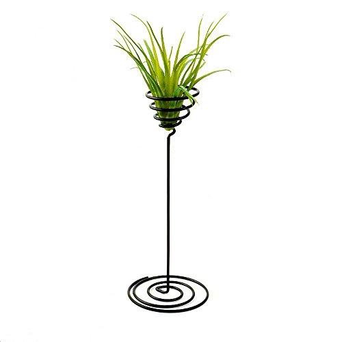 Danmu Art 3A Set, Eisen, Draht Air Pflanzgefäß, Tillandsien-Halter (Pflanze ist nicht im Lieferumfang enthalten) (Eisen-bett-satz)