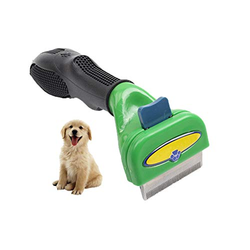 Perfekte Beauty-pinsel (DYYTR PET Pinsel, Katze und Hund Beauty Pinsel Reinigung Pinsel, Perfekte Glatte Pinsel für kleine und mittlere Hunde (grün))