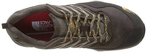 The North Face M Hedgehog Hike Gtx, Chaussures de Randonnée Homme Marron (Morel Brown/Tnf Yellow)