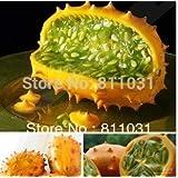 Hot vente 5Kiwano Melon Graines, Cucumis metulifer, concombre africain Graines bricolage jardin Home