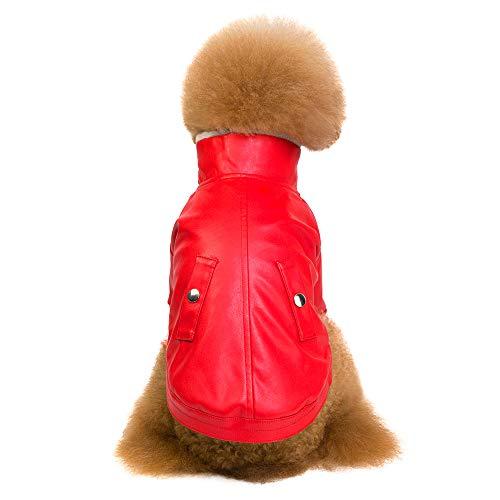 Fenverk Mode GemüTlich Haustier Hund Britisch Stil SAMT Verdickt ReißVerschluss Mantel Windjacke Sicherheit Weste Outfits Jumper Sweatshirt(rot,M)