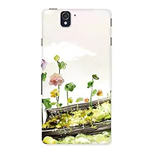 Enticing Fence Landscape Multicolor Back Case Cover for Sony Xperia Z