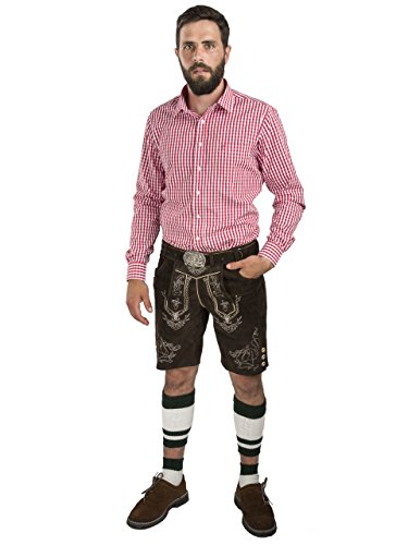 Herren Lederhose Wiesnjäger mit Trachtengürtel - Herren Trachtenlederhose Oktoberfest mit Gürtel - Trachtenhose kurz (46, dunkelbraun) - 2