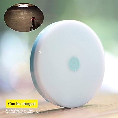 youruichuang LED lampe d'éclairage nocturne rechargeable Capteur de mouvement Lumière de nuit pour placard Escaliers Chambre Nursery, LED Sans fil Lumière de nuit Lumière murale pour vestiaire Escalier Salle de bain Chambre Cuisine