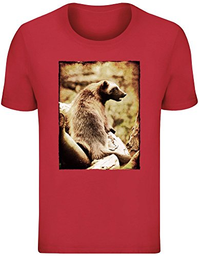 Tasmanischer Teufel - Tasmanian Devil T-Shirt Top Short Sleeve Jersey for Men 100{4b89adc99ee73ff8779cc5608b113d787a2e3d1cecb13c832dec74e77140598a} Soft Cotton Mens Clothing Large