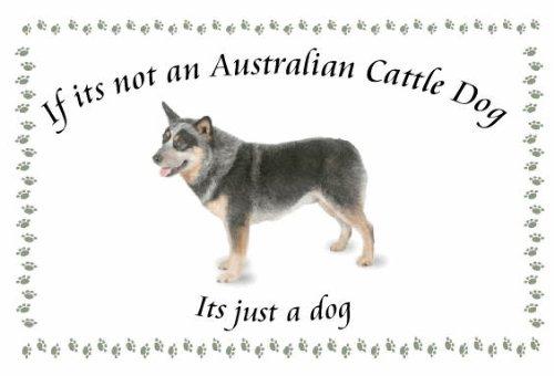 Australian Cattle Dog-Portachiavi cane novità-se non