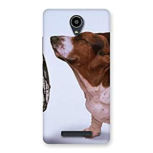 Delighted Dog Fan Back Case Cover for Redmi Note 2