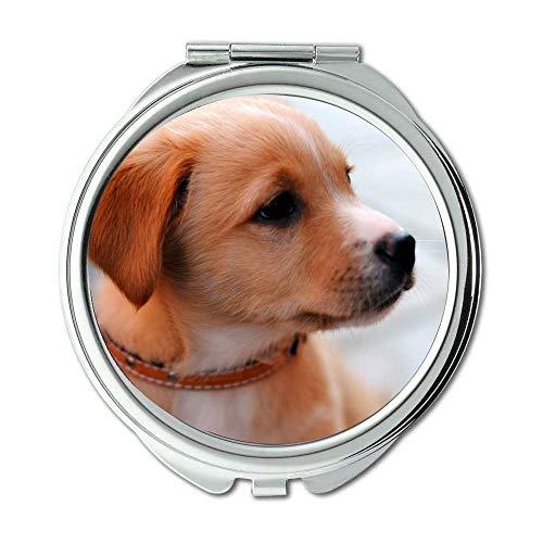 Yanteng Spiegel, Kleiner Spiegel, Hipster Dog Wear Farbe Hund Download, Taschenspiegel, 1 X 2X Lupe