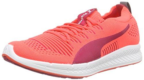 Puma Ignite Proknit Wn's, Chaussures de Course Femme
