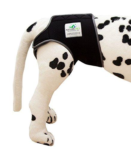 Läufigkeitshose, Läufigkeitshöschen, Größe M, Hundeschutzhose, Inkontinenzhöschen für Hunde